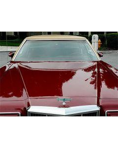 1977-79 Thunderbird Windshield